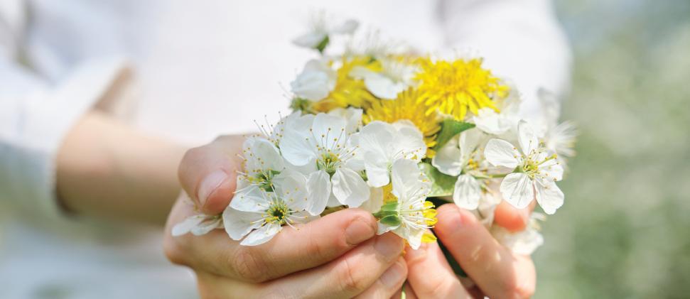 ¡Que no te gane la primavera! Los descongestionantes nasales pueden ser de gran ayuda