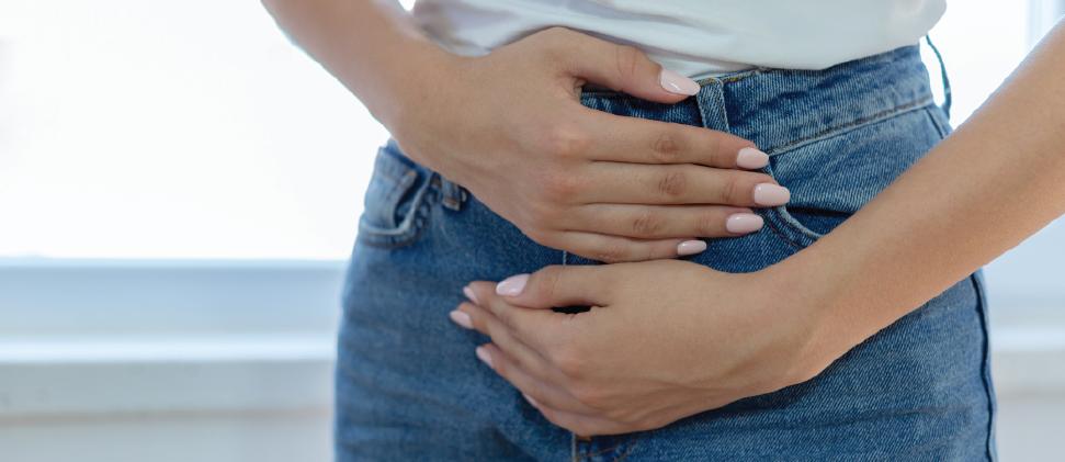 Salud Digestiva: Probióticos y reguladores del tránsito intestinal