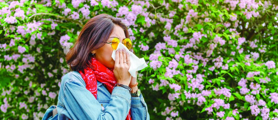 Alergias primaverales: Combátelas de raíz